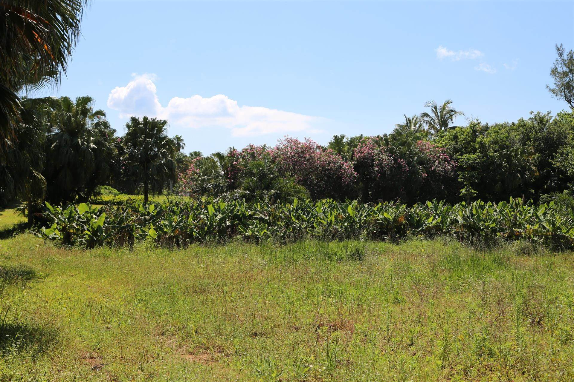 5. Terreno / Lote por un Venta en North Estate: Arrowroot Lane Building Lot North Estate: Arrowroot Lane Building Lot, Arrowroot Lane,Bermuda – Sinclair Realty